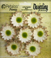 CREAM Mix 7 Mini DAISY Paper Flowers Green Cntr 30mm across Darjeeling Petaloo
