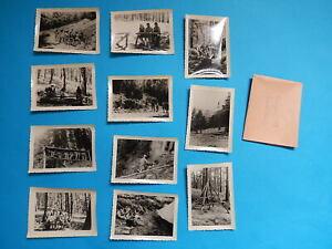 LOT DE 11  PHOTO  SEYNE GRAND CAMP 1959 SCOUT SCOUTISME BIVOUAC CAMP