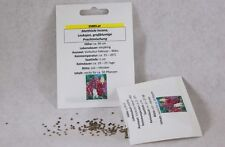 Levkojen großblumige Prachtmischung Matthiola-Arten Samen Saatgut Profiqualität