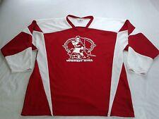"Teamwork Athletic Apparel ""Work It Girl"" #23 Hockey Style Jersey 2Xl 50-52"