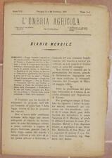 L'UMBRIA AGRICOLA 15 28 FEBBRAIO 1890 VINO BARLETTA PUGLIA GELSO MULBERRY TREE