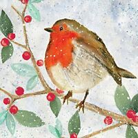 Robin Berries and Snow 10 pack small Christmas RSPB Charity cards Foil detail