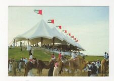Camel Racing United Arab Emirates 1987 Postcard 365a