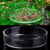 1*Plat d'alimentation Acrylique pour Aquarium Crevette Poisson 2.56 x0.78''