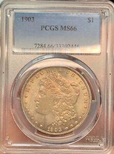 1903 ms66 bronze toned Morgan Dollar