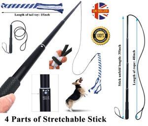 Extendable Teaser Wand Dog Toy Stick Flirt Fishing Pole for Dogs Dog Training UK