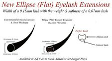 Ellipse Flat False Eyelash Extensions 0.20 C Curl Mixed Sizes Individual Lashes