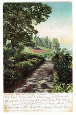 Los Angeles California Elysian Park posted 1906