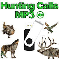 Hunting Calls Complete Archive | mp3's | Predator | Distressed | Big Game | Real