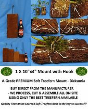 "THG - Orchid Mount x 4 (FOUR) Treefern DICKSONIA 10""x 4"" x 2"" PREMIUM A-GRADE"