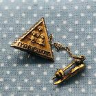 Vtg Masonic Jobs Daughters IYOB FILIAE Gold Filled Lapel Pin Brooch & Cornucopia