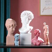 David Venus Bust Sculpture Sketch Ancient Goddess Figure Art Home Craft Decor