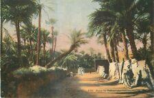 SCENES ET TYPES dans les palmiers