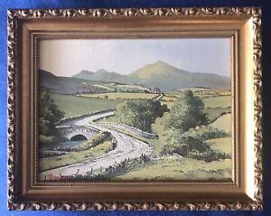 Original Irish Art Oil On Board Painting Trassey Mourne Mountains By Derek Quann