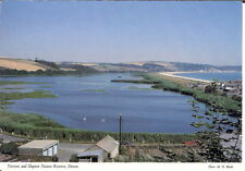 Devon - Torcross and Slapton Nature Reserve - Unposted c.1980's