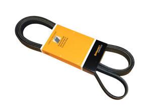 Serpentine Belt-DIESEL CRP PK060870