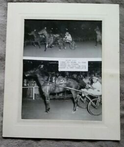 Matted photograph Harness Horse Racing, 1957 Nicky Vollo 1st Win signed