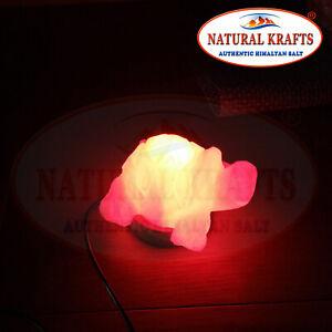 HIMALAYAN WHITE SALT CRYSTAL USB LAMP LIGHT TORTOISE SHAPE LED MULTICOLOR