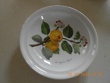 "PORTMEIRION POMONA INGESTRIE PIPPIN APPLE 8.5"" RIMMED SOUP PLATE VGC- BUY IT NOW"
