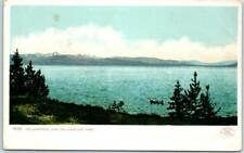 "Yellowstone National Park Postcard ""YELLOWSTONE LAKE"" Boating Scene 1910s Unused"