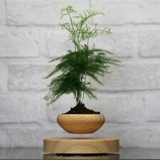 Magnetic Levitation Air Bonsai Suspension Plant Pot Floating Flower Pot Potted