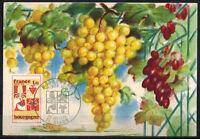 1975-Fdc Carte 1°Jour-France-Bourgogne -Grappe de Raisin-21.Dijon-Timbre.Yv.1848