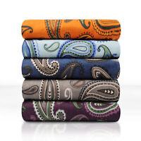 Decorative Paisley Cotton Flannel Sheet Set