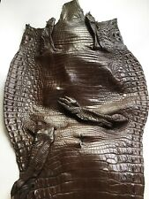 Crocodile Skin Leather Hide Exotic Skin Craft Supply Belly Brown SZ 46cm #CR-11
