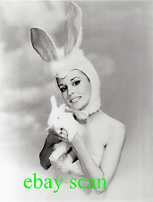 MARIANNA HILL 8X10 B&W PHOTO EASTER BUNNY PORTRAIT Circa 1965 Adorable Costume