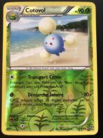 Carte Pokemon COTOVOL 5/114 RARE Reverse XY11 Offensive Vapeur FR NEUF