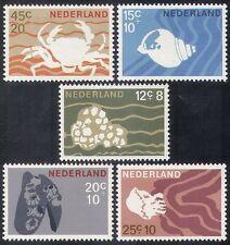 Netherlands 1967 Health/Welfare/Crab/Shells/Nature/Marine 5v set (n32260)