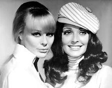 1960-1969 SHARON TATE b/w movie promo photo (Celebrities)