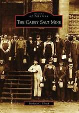 NEW The Carey Salt Mine (Images of America: Kansas) by Barbara C. Ulrich