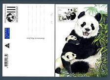 AUSTRALIA - 1995 - CARTOLINA - PA - 45c - Cina - China - Panda