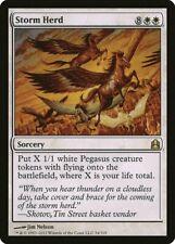 Storm Herd Commander HEAVILY PLD White Rare MAGIC THE GATHERING CARD ABUGames