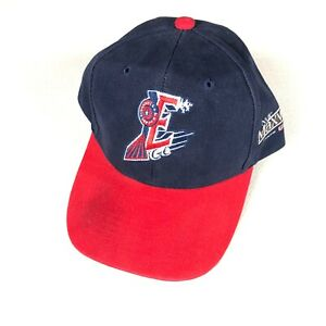 Round Rock Express Hat Adult One Size Adjustable Texas Minor League Baseball Cap