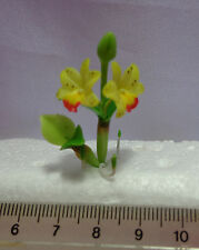 1:12 Scale Orchid Flowers,(Yellow) Garden