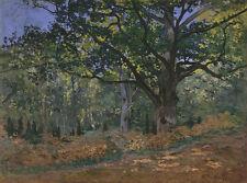 The Bodmer Oak, Fontainebleau Forest by Claude Monet 75cm x 56cm Canvas Print