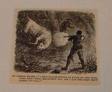 1880 magazine engraving ~ Man Shooting Wild Bull