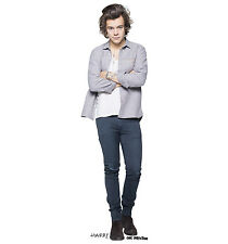 Harry Styles grey shirt 24 X 36 Poster
