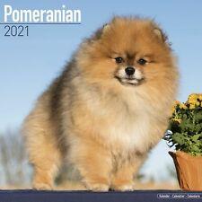 Pomeranian Calendar 2021 Premium Dog Breed Calendars