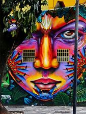 ART PRINT POSTER PHOTO GRAFFITI MURAL STREET PSYCHEDELIC FACE NOFL0305