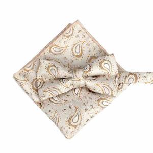 Men Paisley Pre-tied Bowtie Pocket Square Set Wedding Party Bow Tie Hanky Lot