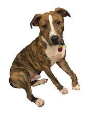 Custom Pet Portrait Digital Drawing Puppy Dog Cat Kitty Horse Keepsake Photo