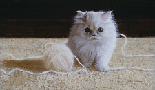 "John Weiss ""Persian Kitten"" #512/1000 $800 VALUE! w/ COA"