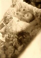 Antique Post Mortem Baby Casket Photo 102 Bizarre Odd Strange