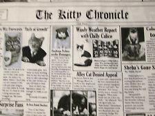 CAT NEWSPAPER BLACK WHITE BLUE KITTY NEWS CHONICLES COTTON FABRIC FQ