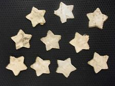 Stern, Stern aus Birkenrinde, Dekostern, Streuteile, 10 Stück