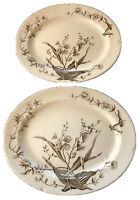 Antique J. F. Wiseman Platters ~ Flower Sprays ~ Foley Potteries ~ Staffordshire