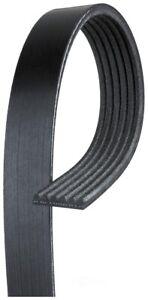 Serpentine Belt Gates K060910